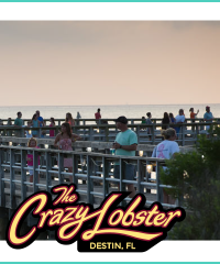 The Crazy Lobster, Destin, FL